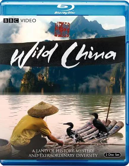 美丽中国剧照